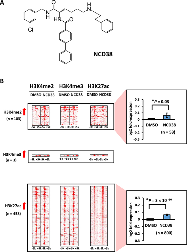 Alteration of histone modification by NCD38 treatment.