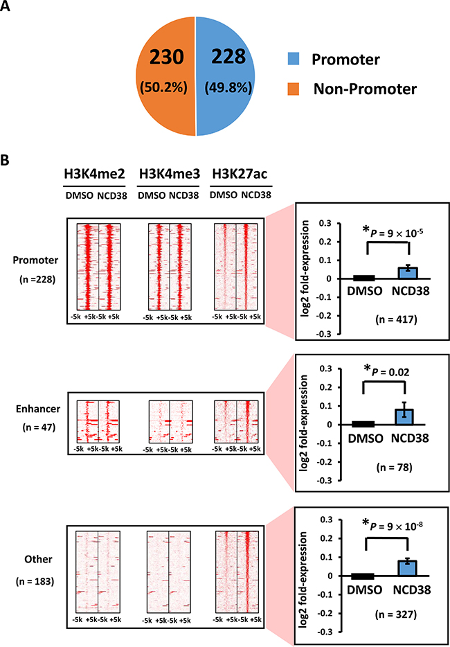 Distribution of H3K27ac-increased regions following NCD38 treatment.