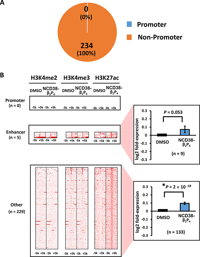 Distribution of H3K27ac-increased regions following NCD38-β2P4 treatment.