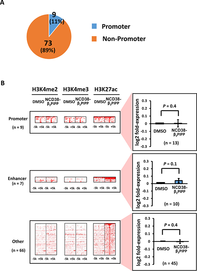 Distribution of the H3K27ac-increased regions following NCD38-β2PIPP treatment.