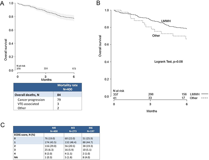 Survival at 3 and 6 months after initiation of anticoagulant therapy.