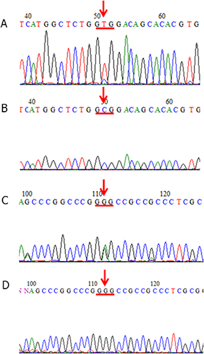 KCTD12 mutations in GISTs.