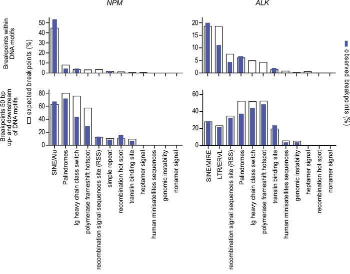 Localization of genomic breakpoints.