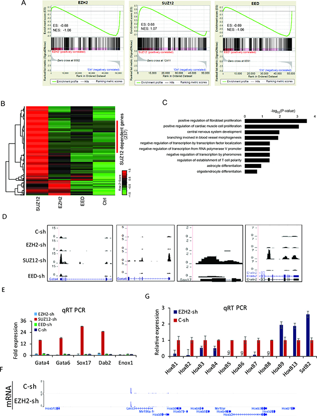 Transcriptome alterations in PRC2 depleted cells.