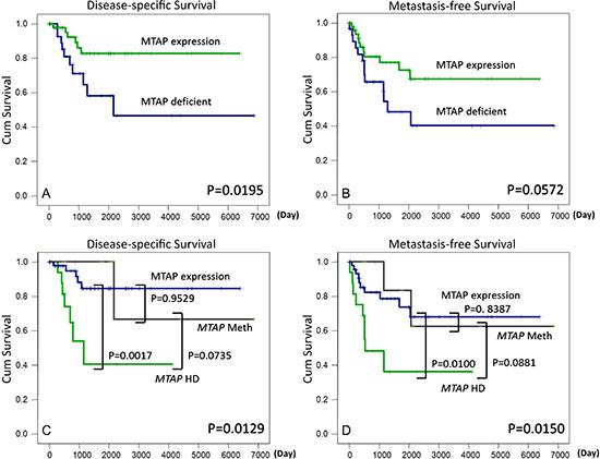 MTAP protein deficiency predicts adverse disease-specific