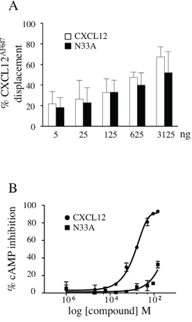 CXCL12 and N33A binding ability to CXCR4 and Gαi-coupling efficacy.
