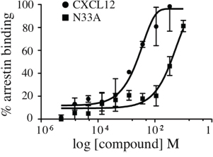 Recruitment of β-arrestin to CXCR4.