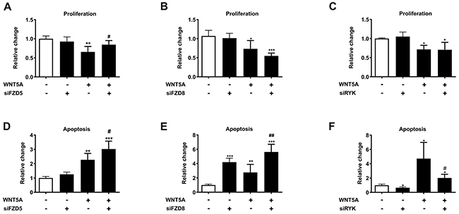 FZD5 and RYK mediate the anti-proliferative and pro-apoptotic effects of WNT5A in PC3 cells.