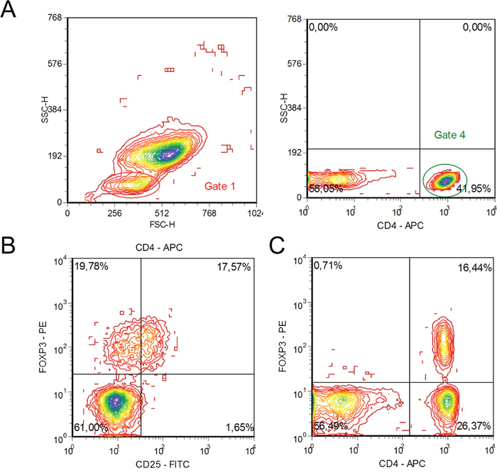 Flow cytometry characteristic of CD4+CD25+FOXP3+ regulatory T cells and CD4+FOXP3+ T cells in the peripheral blood of a multiple myeloma patient.