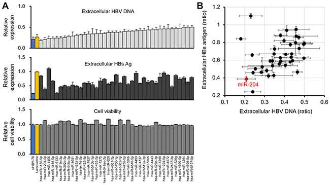 Identification of miR-204 as a candidate miRNA for HBV suppression.
