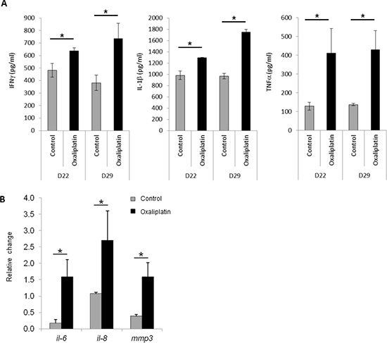 Expression of senescence-associated genes after oxaliplatin treatment in vivo and in vitro.