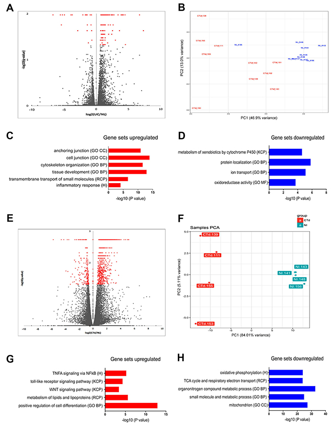 Transcriptome analysis of UC and non-IBD colonic organoids reveal distinct populations with clustering of gene set expression analyses consistent with colitic vs. normal colon.