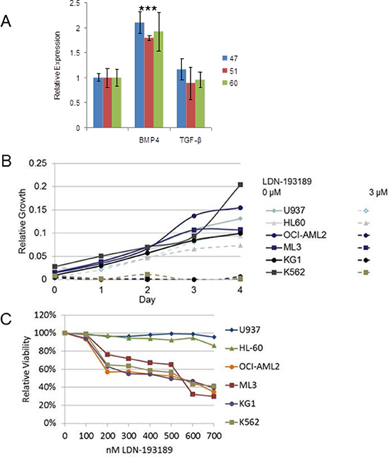 BMP4 induced MIXL1, an important survival axis and therapeutic target in AML.