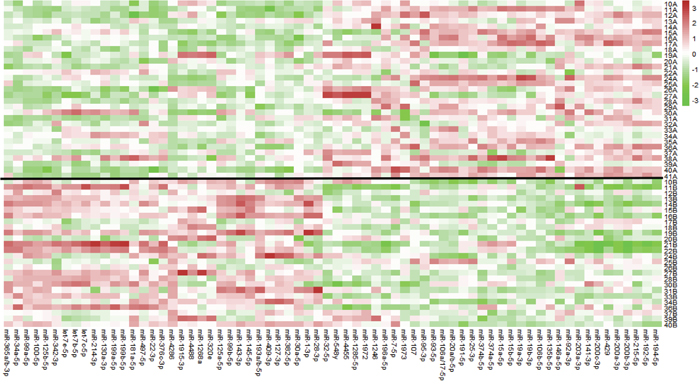Heat map of differentially expressed miRNAs between pre-therapy and post-therapy tumor samples in patients with pIR.