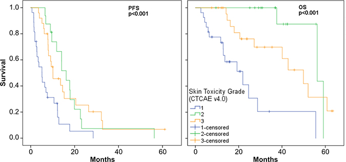 PFS and OS Kaplan–Meier plots for cetuximab associated ST grades.