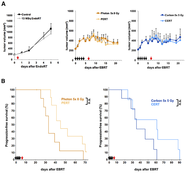 Tumor growth delay and time to progression of B16F10-tumors under treatment with EBRT and 131I-Benzamide.