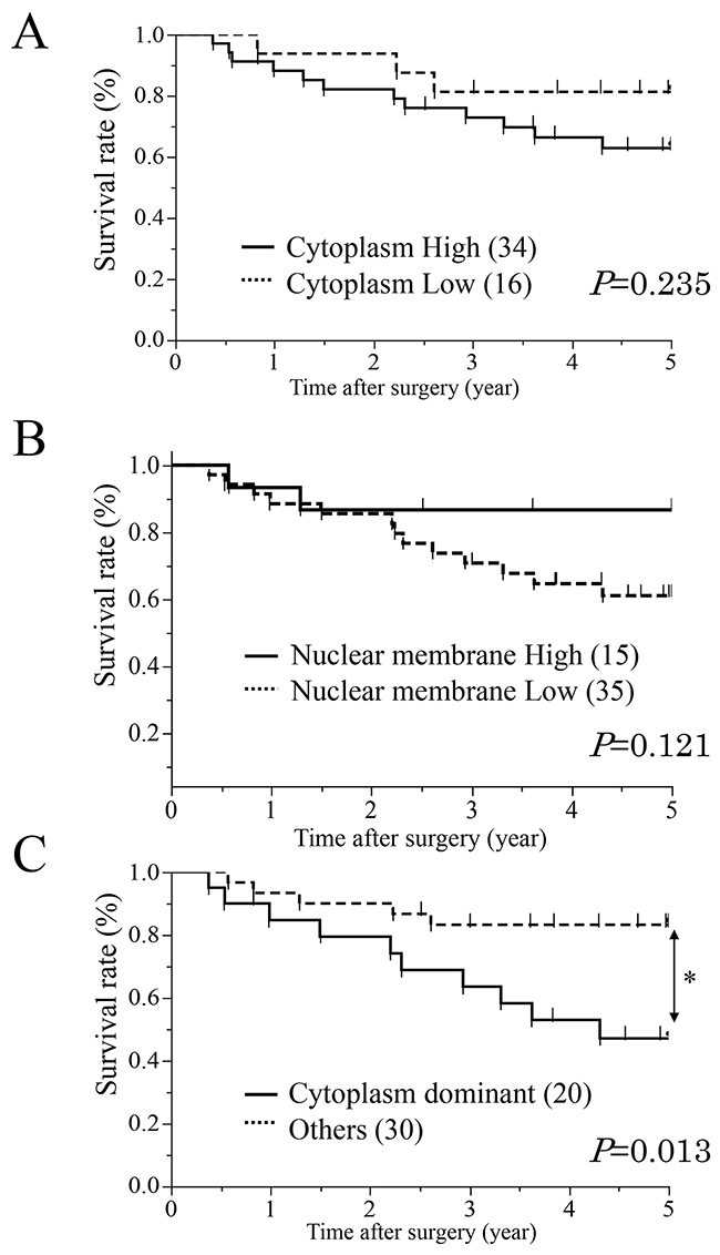 Survival curves of patients after curative resection for ESCC according to the expression of AQP1.
