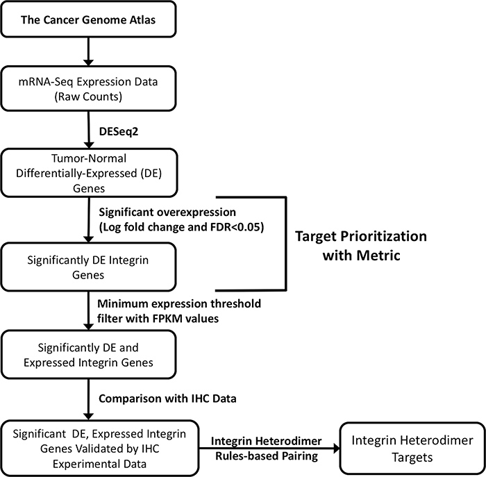 Schematic flowchart depicting the strategy for selecting integrin drug targets.