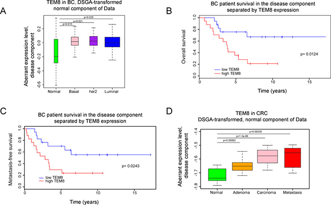Expression of TEM8 is associated with disease in breast and colorectal cancer.