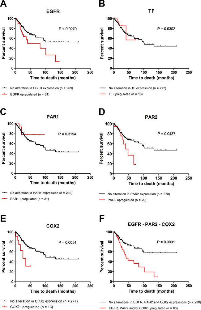 Upregulation of EGFR, PAR2 and COX2 is associated with poor overall survival in cervical cancer.