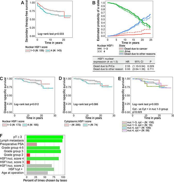 Elevated HSF1 expression predicts shorter time to secondary therapy and poorer disease-specific survival after radical prostatectomy.