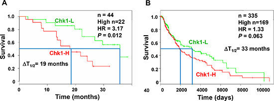 High Chk1 expression is associated with poor prognosis of melanoma.