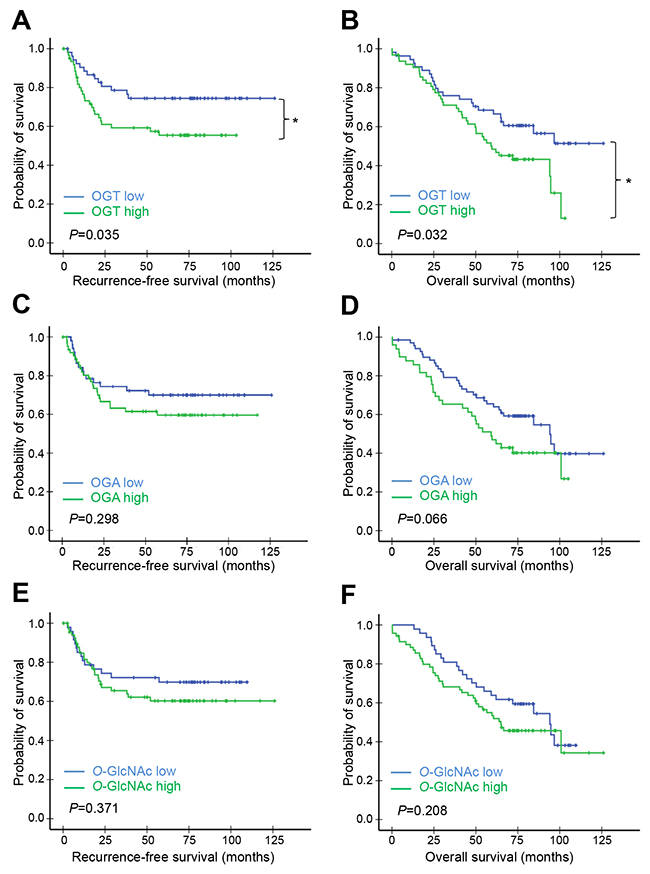 Kaplan–Meier survival analysis of patients in cohort A according to OGT, OGA, or O-GlcNAc levels.