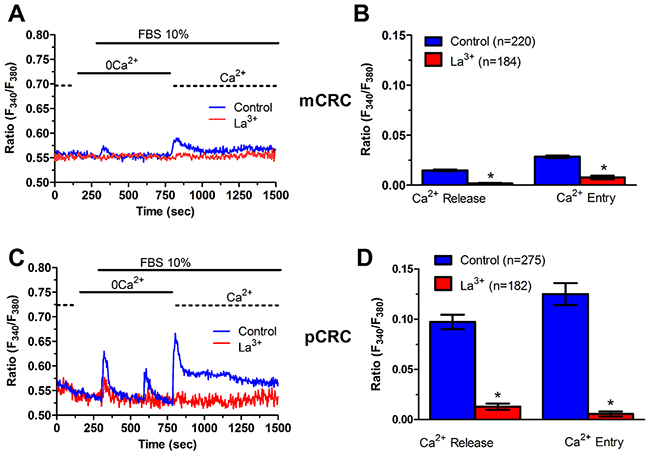 La3+ inhibits InsP3-dependent Ca2+ release in patients-derived colorectal cancer cells.