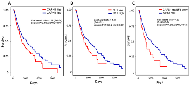 Kaplan-Meier plots of melanoma patients with CAPN1 over expression and NF1 under expression show worse prognosis compared to patients with alterations only in CAPN1 or in NF1.