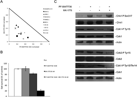 Synergistic effects of Chk1 and Wee1 inhibitors in MCL cell lines.