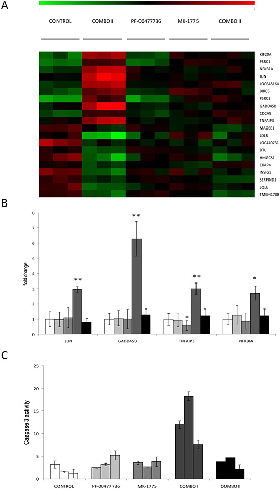 Analysis of gene expression profile and apoptosis evaluation in JeKo-1 Xenografts samples treated or not with the single or combined Chk1 and Wee1 inhibitor.