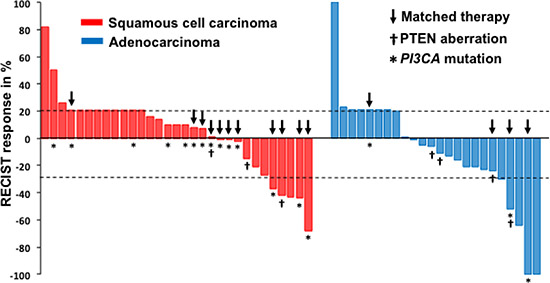The waterfall plot shows the best tumor response to their initial phase I clinical trial therapy (n = 55).