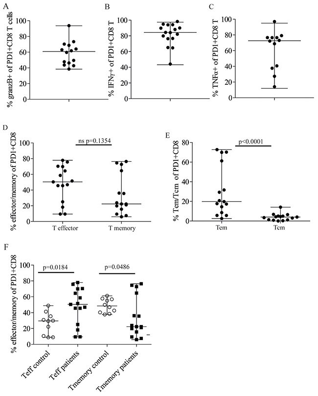 Majority of PD1+CD8+ T cells in patient bone marrow are Granzyme B+ and produce IFNγ and TNFα.