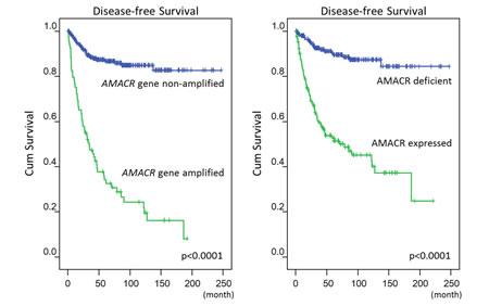 Figure-3: Log-rank univariate analyses: