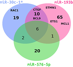 Venn diagram of differentially downregulated genes in miRNA-transfected A375 cells.