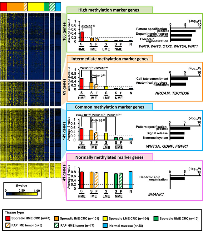 Extraction of marker genes.