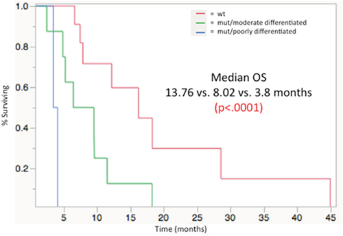 Median overall survival from time of first 90Y radioembolizaion, stratified by mutational load/histologic grade groupings: WT (13. 76 mos), MUT/moderately differentiated (8.02 mos), MUT/poorly differentiated (3.8 mos); p< 0.0001.