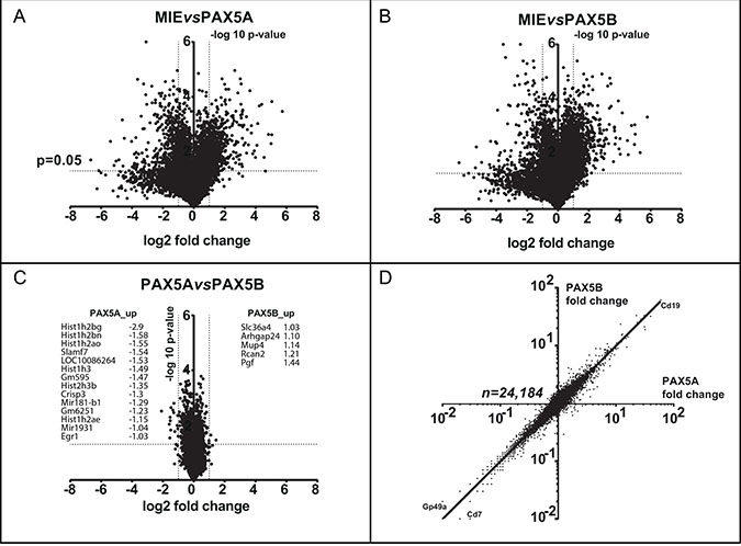 PAX5A and PAX5B drive a comparable transcriptomic early B cell program.