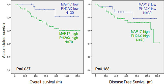 Combined MAP17 and phosphorylation of γH2AX (p-H2AX) analysis of survival in rectal tumors after concurrent chemoradiotherapy.