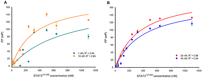 FP versus STAT3127-688 concentration-response curves for varying concentrations of the Bodipy-DNA conjugate.