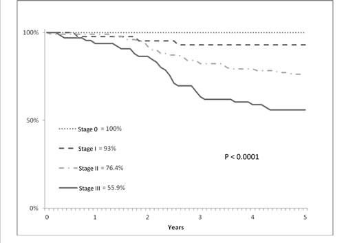 Cumulative survival (y axis) and overall survival (x axis) evaluated according to Kaplan-Meier statistical analysis and pathological stage in T3 low/middle rectal cancer patients treated with