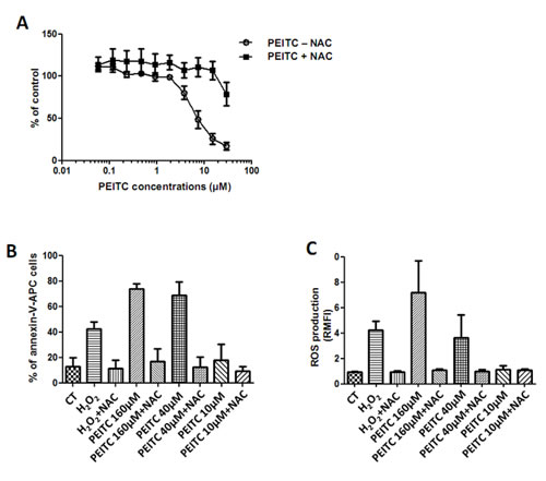 Effect of PEITC on MPM cell lines.