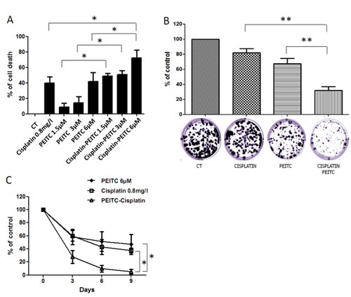 Effect of PEITC and cisplatin alone or in combination on MPM cells.