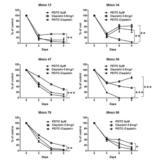 Effect of PEITC and cisplatin alone or in combination on MPM cells viability over time.