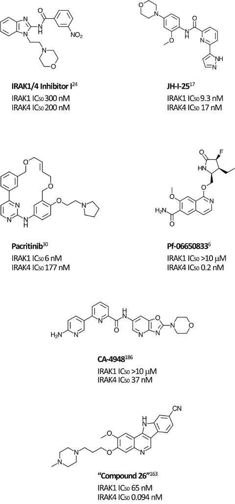 Selected IRAK1 and IRAK4 inhibitors.
