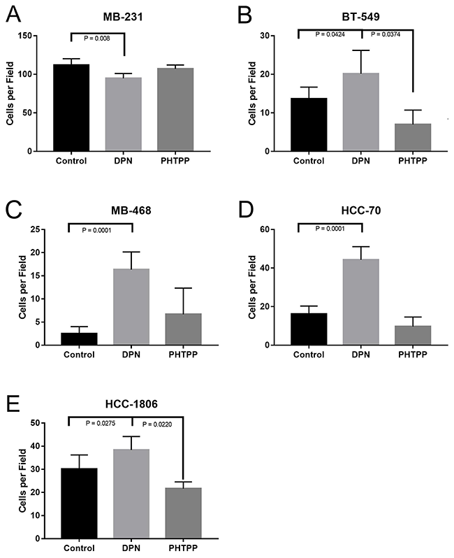 Activation of ERβ increases invasion of TNBC cells.