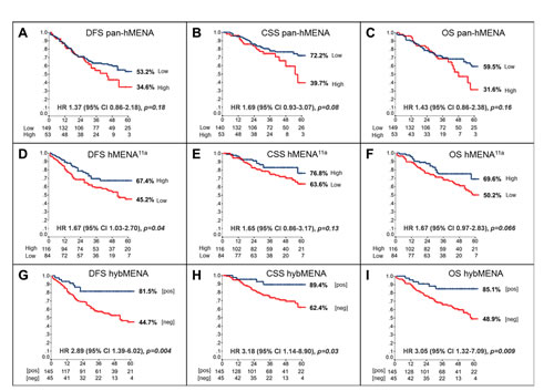 Prognostic impact of hMENA isoform expression in node-negative NSCLC.