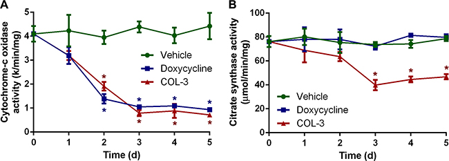 DC decreases the activity of cytochrome-c oxidase, whereas COL-3 decreases the activity of cytochrome-c oxidase as well as citrate synthase.