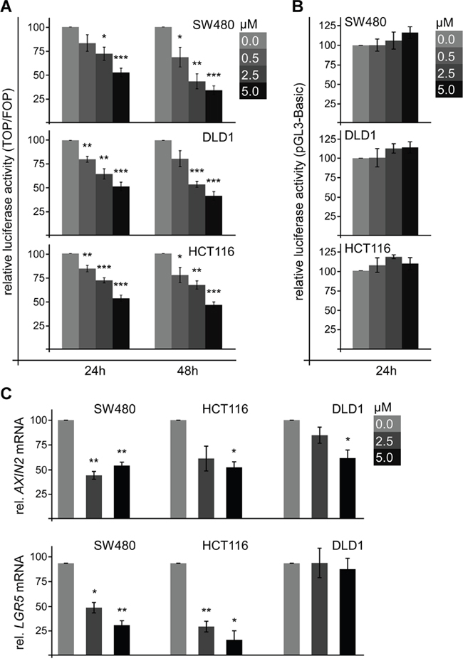 SFN inhibits Wnt/β-catenin signaling in colorectal cancer cells.