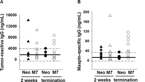 Quantification of tumor-reactive and maspin-specific IgG.